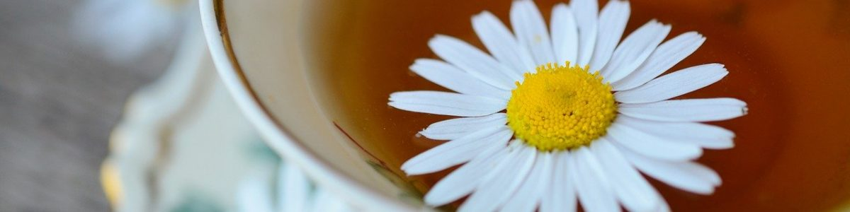 Chamomile Tea Sleep Blog